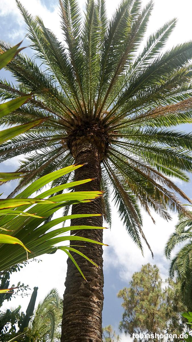 Palmitos Park Gran Canaria Tobias Hoiten