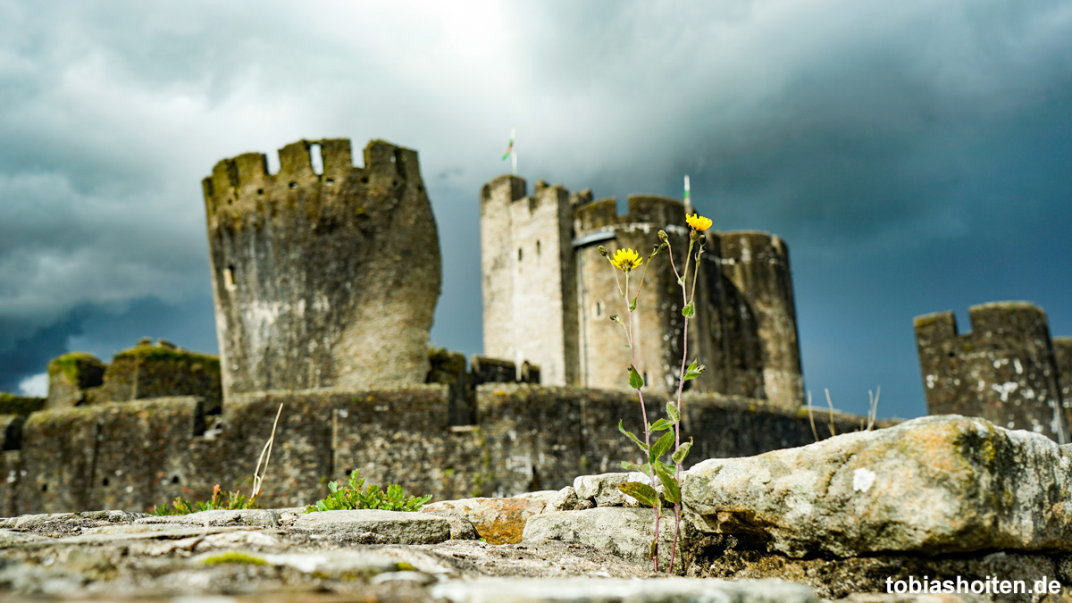 wales-caerphilly-castle-tobias-hoiten-3