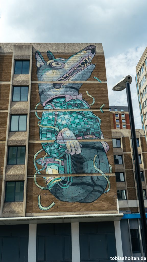 bristol-street-art-work-from-aryz-tobias-hoiten