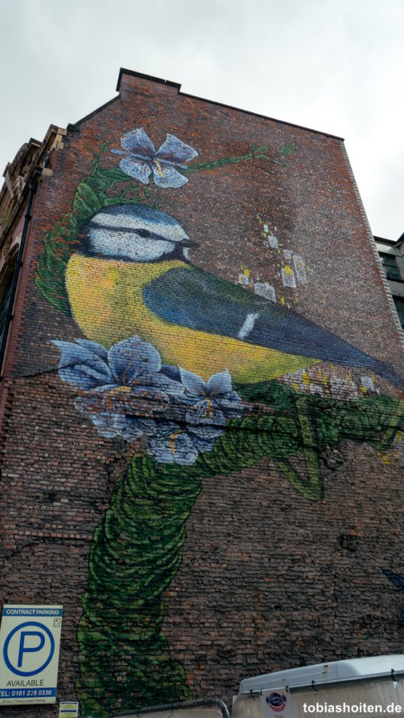 manchester-street-art-faunagraphic-port-street-tobias-hoiten