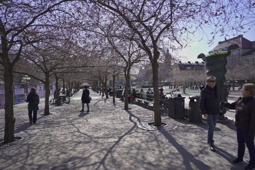 stockholm-kungstradgarden-dirk-menker